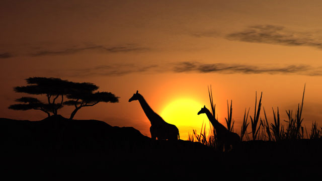 African%20Sunset